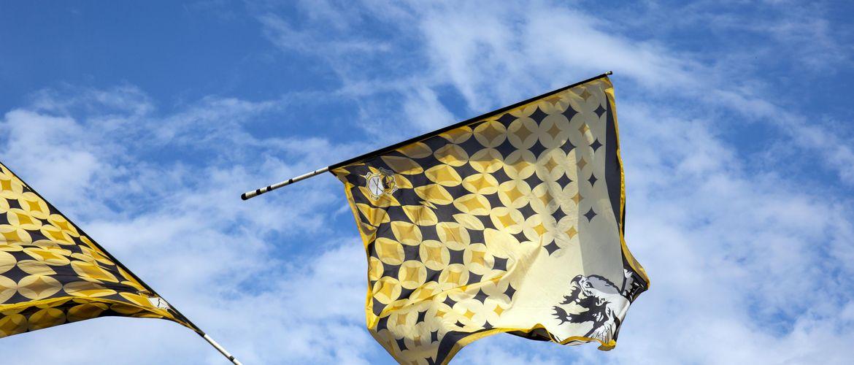 Flaggen iStock538027648 web