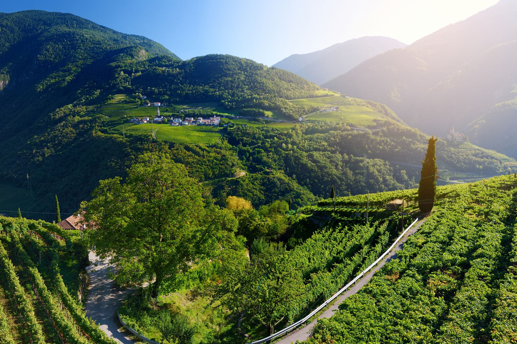 Weinstrasse Trentino Sudtirol iStock983421816 web
